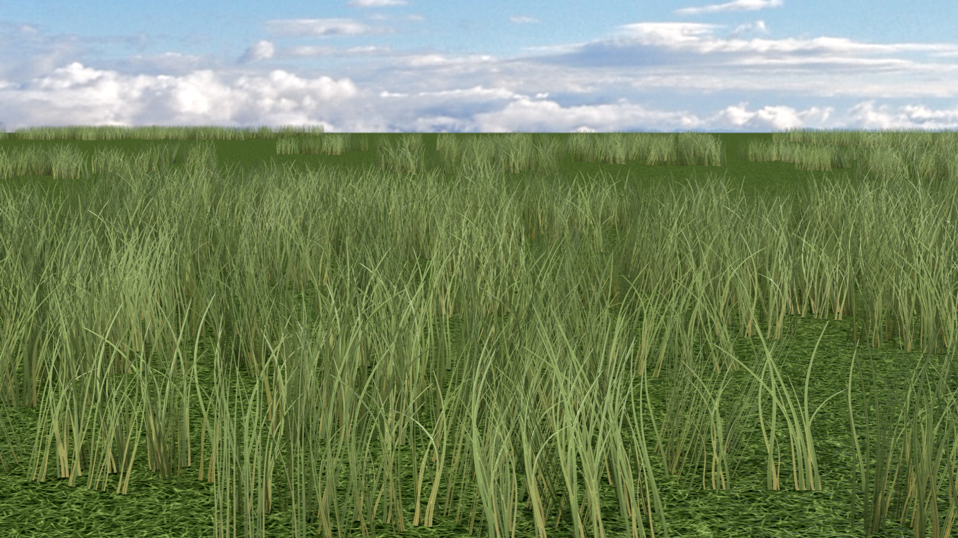 Tall grass test